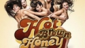 Hot Brown Honey (Briefs Factory)