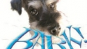 BARK! The Musical... How The Little Dog Found His Voice (Swansong Productions)